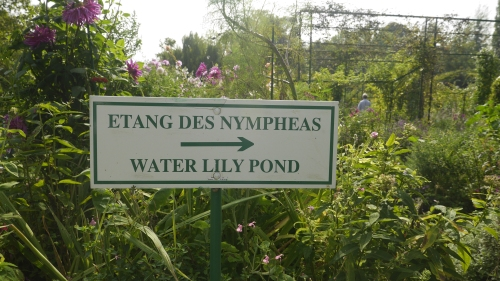 Lily pond sign